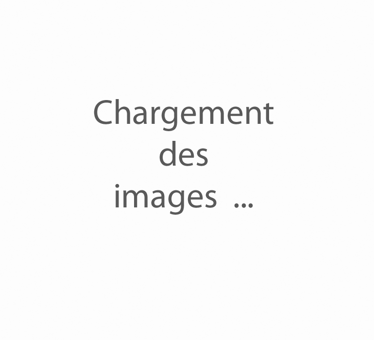[JavaScript Image Player]